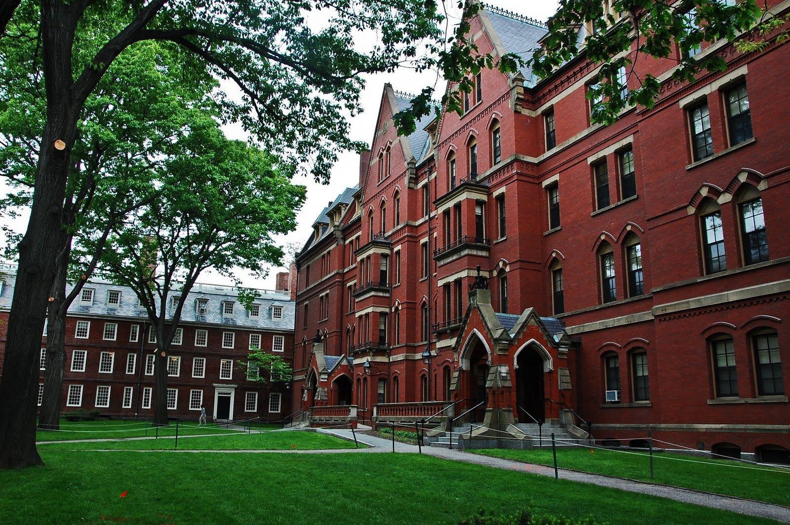 If you go to Harvard University?