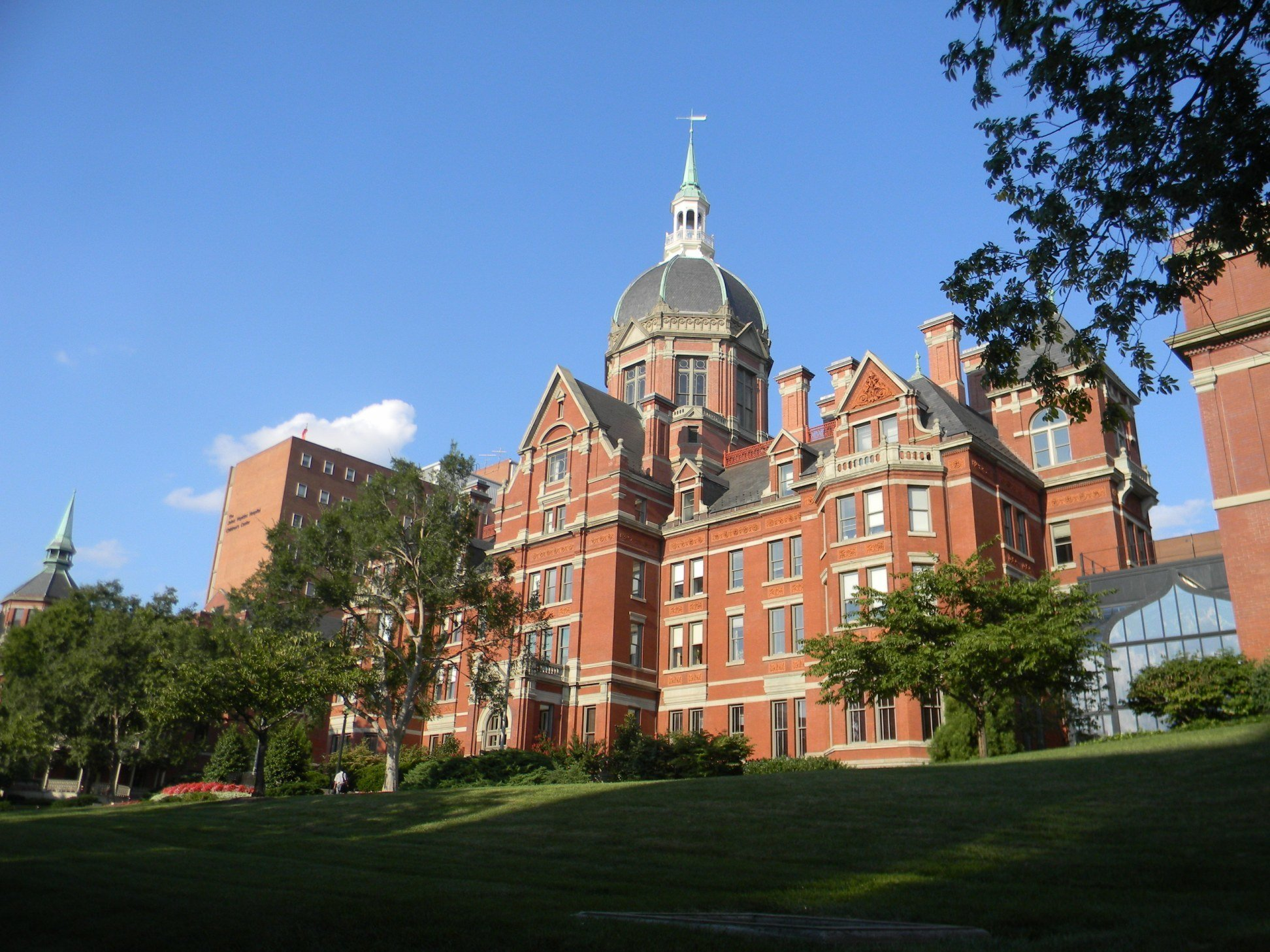 pre-med Johns Hopkins
