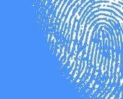 fingerprint analyst