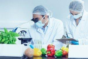 food scientist job description