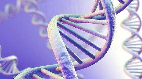 genetics careers